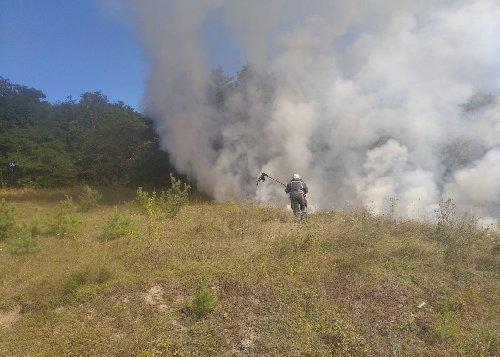 Підпали сухої трави перетворюються на рукотворне стихійне лихо - рятувальники -  - zobrazhennya viber 2020 08 17 07 50 43