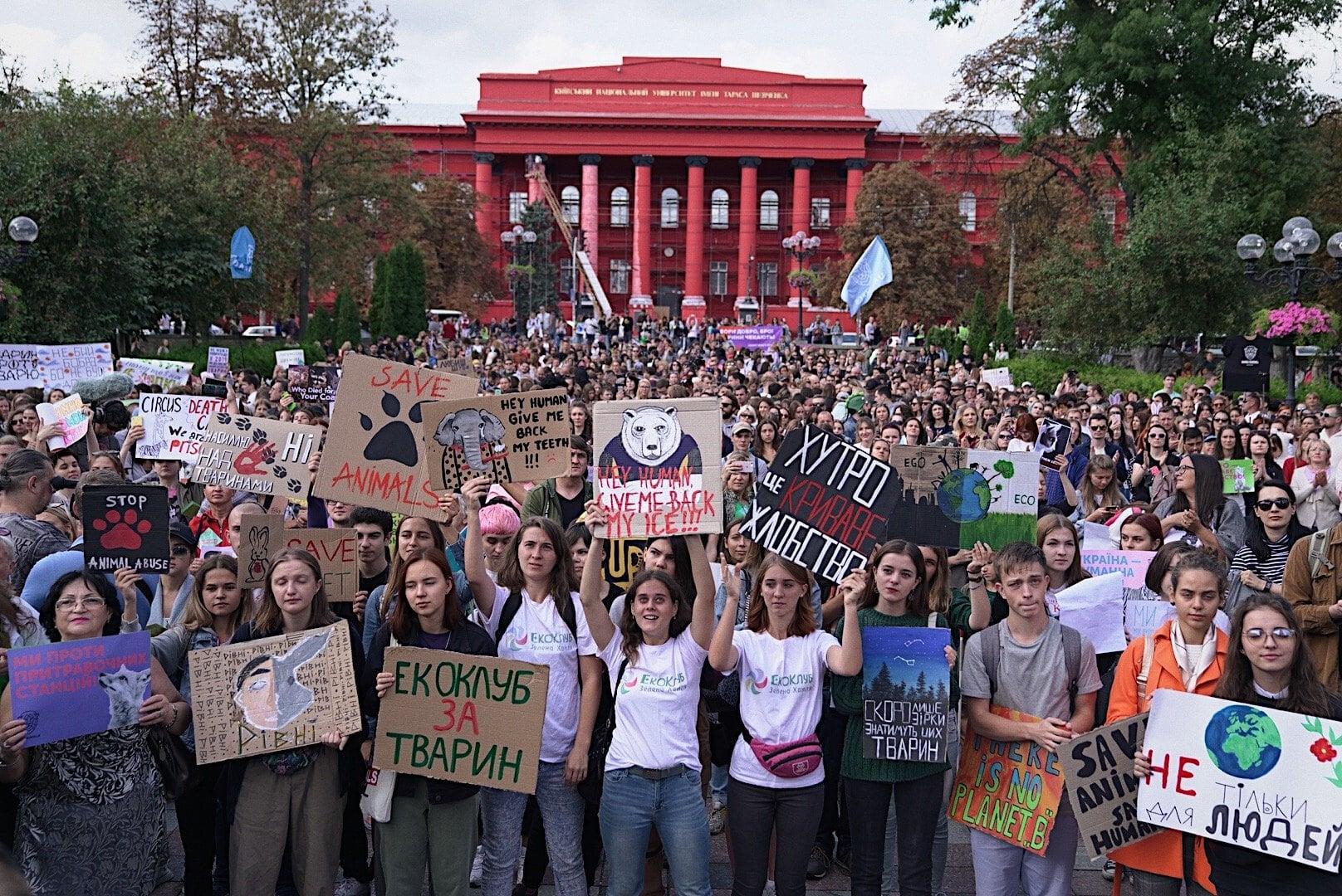 Цьогоріч зоозахисники не вийдуть на вулиці українських міст на марш за тварин -  - 08 aktsyya