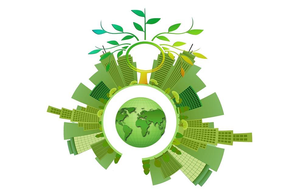 В Україні ліквідують обласні підрозділи Держекоінспекції - Мінприроди, екологія, еко, держава - 10 eko