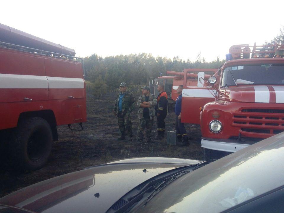 На Переяславщині усі підрозділи ДСНС Лівобережжя гасили пожежу - Переяслав, ліс, ДСНС, вогонь - 118523445 1019851341796549 2020134410416051806 o