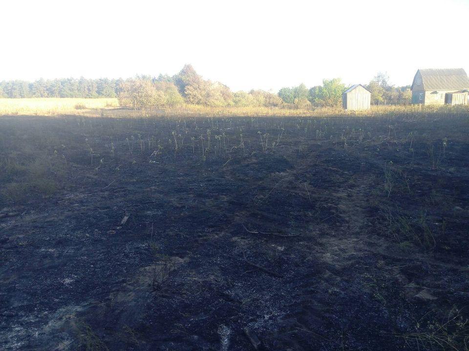 На Переяславщині усі підрозділи ДСНС Лівобережжя гасили пожежу - Переяслав, ліс, ДСНС, вогонь - 118765108 1019851925129824 1014767384356290239 o