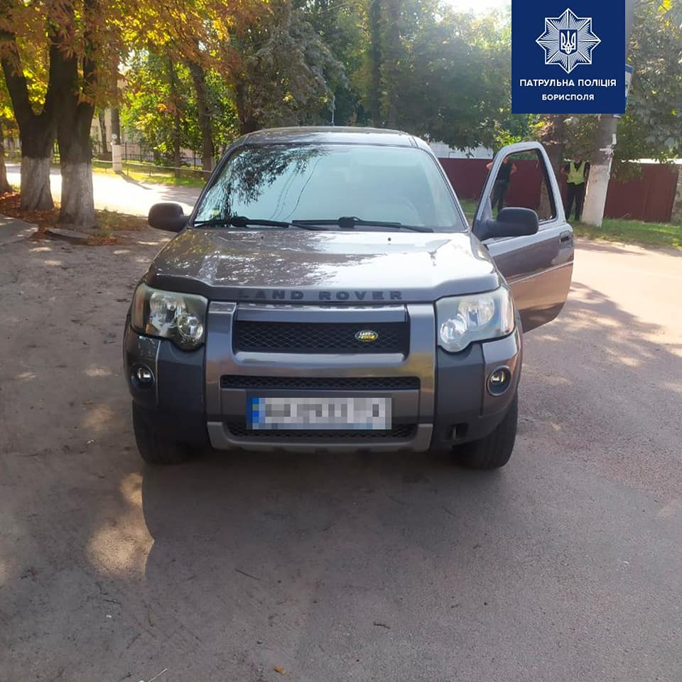 Бориспіль: водій авто на очах у патрульних збив собаку - собака, Поліція - 119160286 2807722429449541 8564117789396955073 n