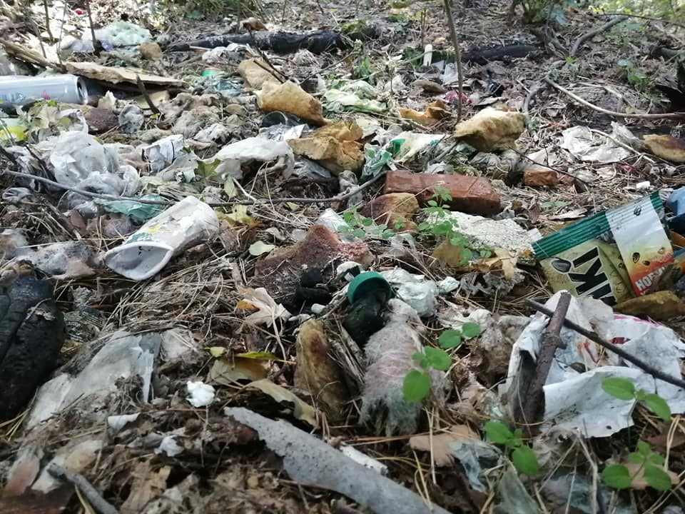 «Люди, схаменіться!»: в Ірпені прибирали сміття - толока, Приірпіння, прибирання міста, київщина, екологія - Pryb Persh 3