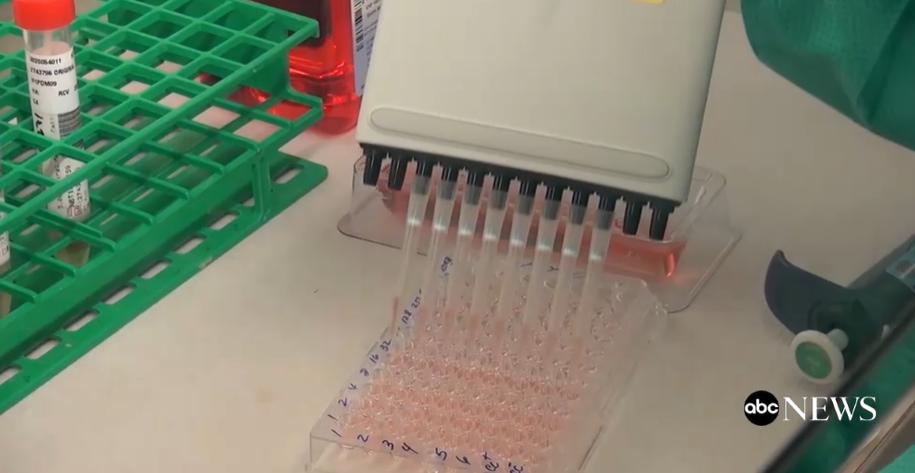Коронавірус має тваринне, а не лабораторне походження – думка вчених - коронавірус - Snymok ekrana 621