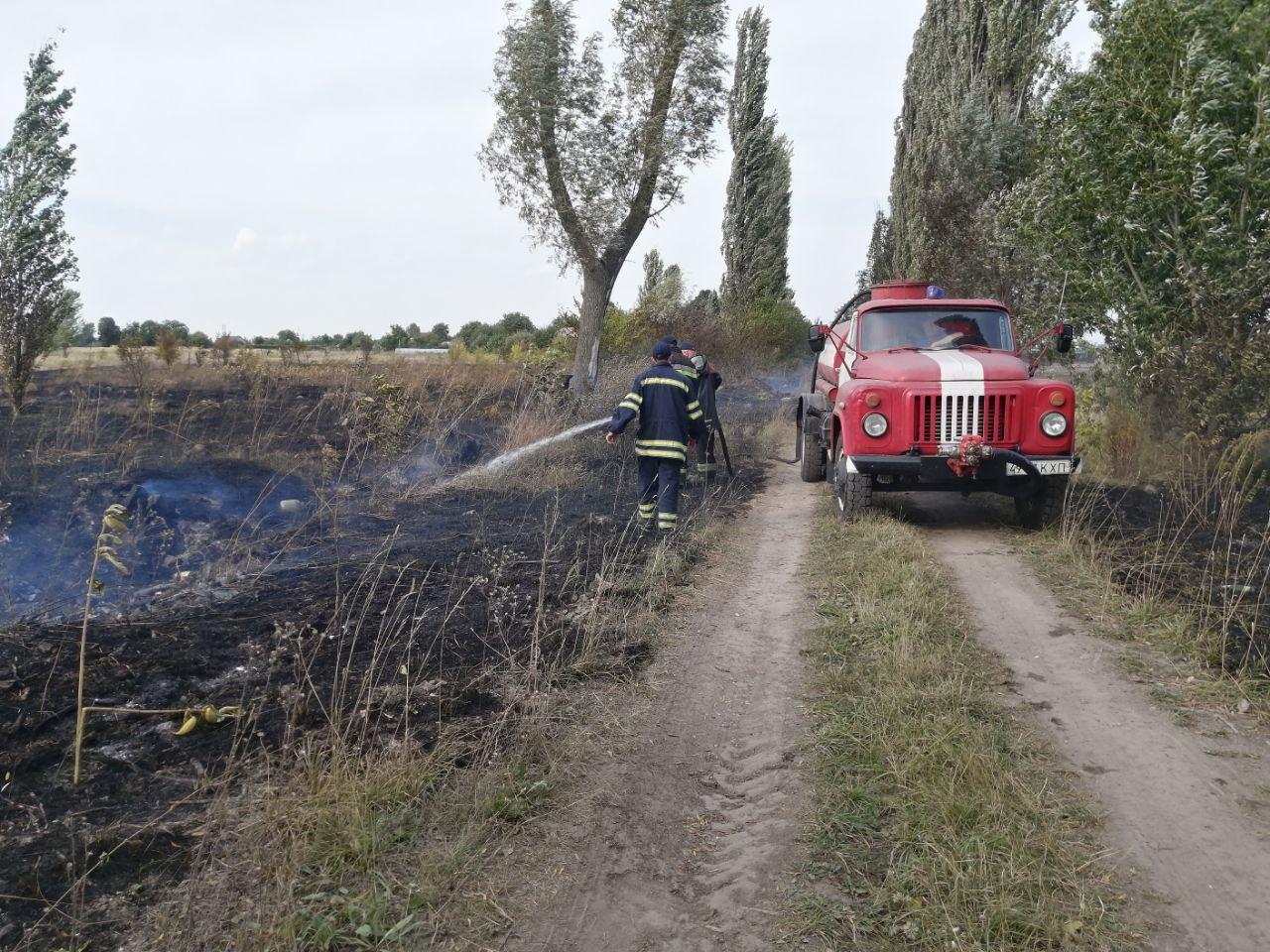На Бориспільщині горять поля, будинки та дерева - трава, ГУ ДСНС у Київськійобласті, вогонь - photo 2020 09 18 08 59 58
