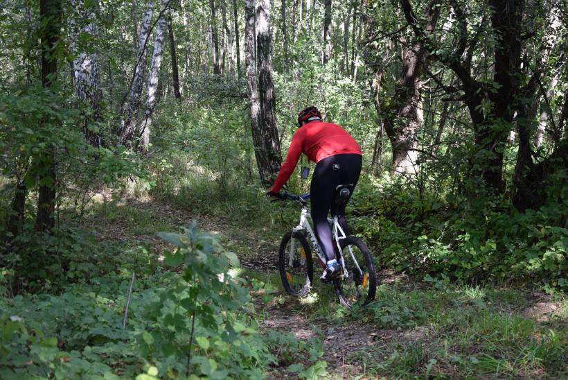У зоні відчуження ЧАЕС з'явиться перший веломаршрут - маршрут, Зона відчуження, велосипедисти - 04 velo2