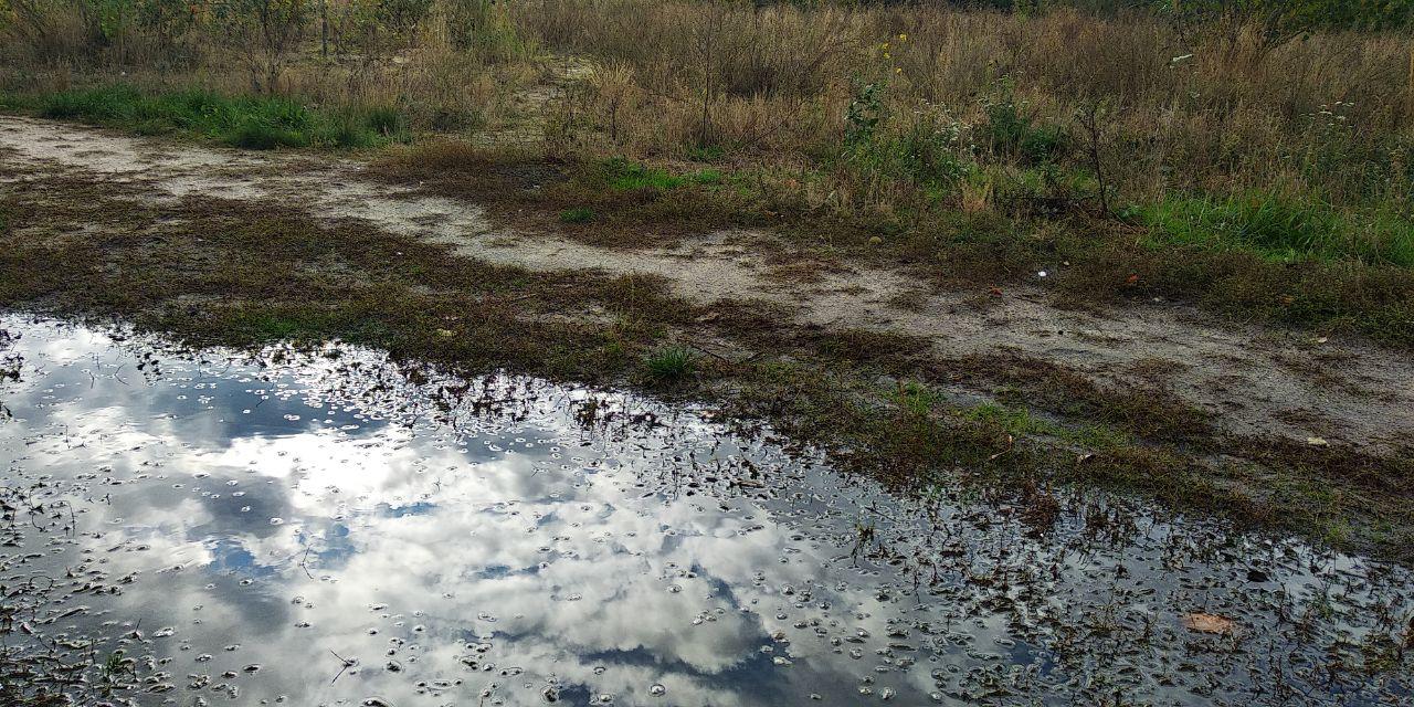 Погода 8 жовтня на Київщині: мінлива хмарність та опади - прогноз погоди, погода - 08 pogoda2
