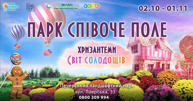 Тандем хризантем та солодощів: нові ідеї фестивалю на Співочому полі - квіти, виставка - 120576318 4296217097115526 8048415276275532937 o