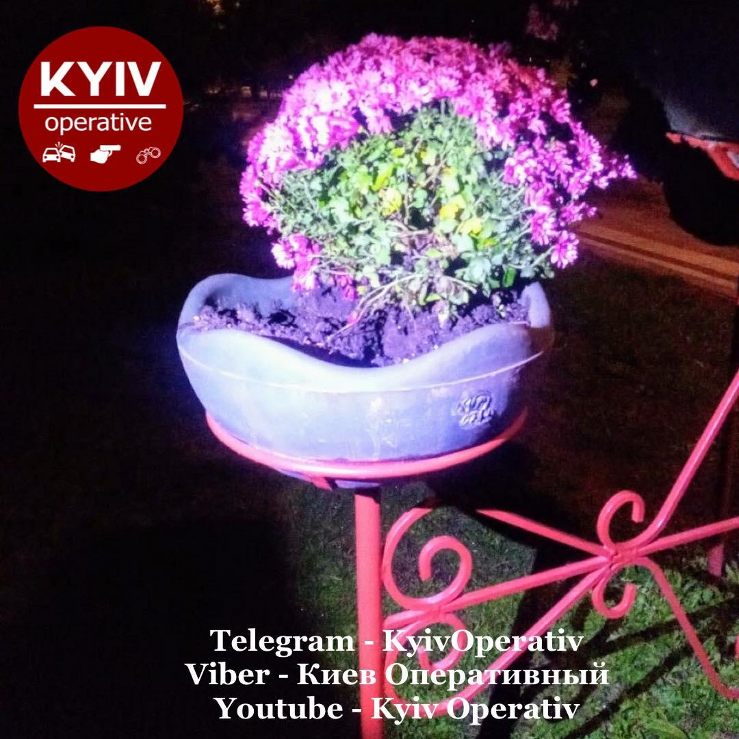 Рвала для продажу: в столичному парку затримали викрадачку квітів - крадіжки, квіти - 121799534 1115027855559966 1746463015412585532 o