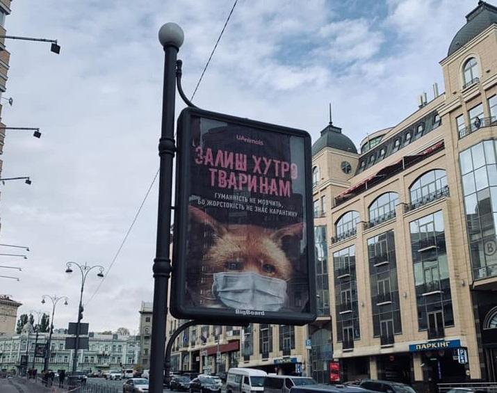 Залиш хутро тваринам: в метро і на вулицях Києва з'явилася нова соціальна реклама - Тварини, зоозахисники, захист тварин, Екологічна акція - 20 zhyvotnye
