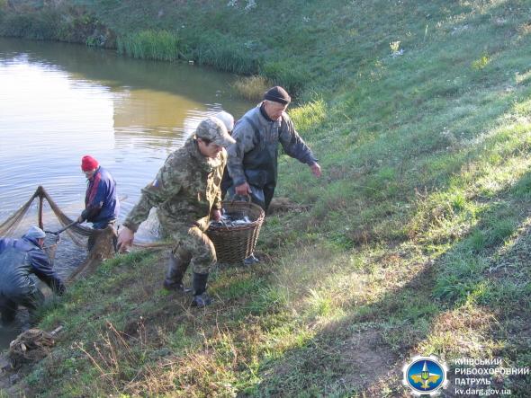 Зариблення на Обухівщині: до річки запустили 3 види  рослиноїдних риб - Річка, зариблення водойм - 22.10.20.03
