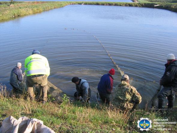Зариблення на Обухівщині: до річки запустили 3 види  рослиноїдних риб - Річка, зариблення водойм - 22.10.20.07