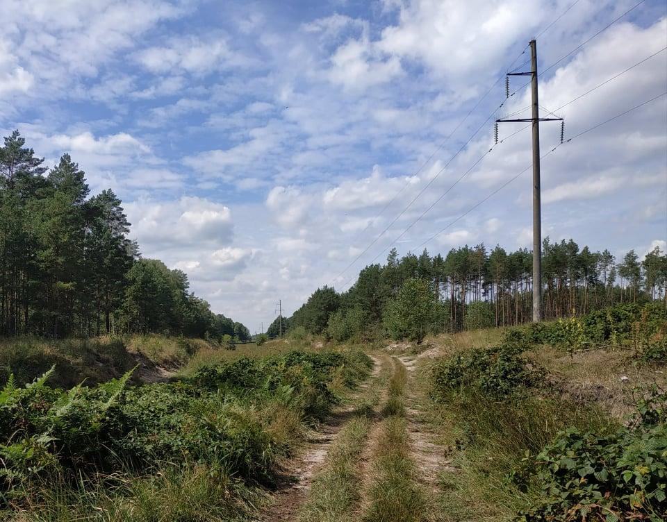 На Фастівщині мають повернути у держвласність 28 земельних ділянок - Фастівський район, земельні ділянки - ZEMLYA