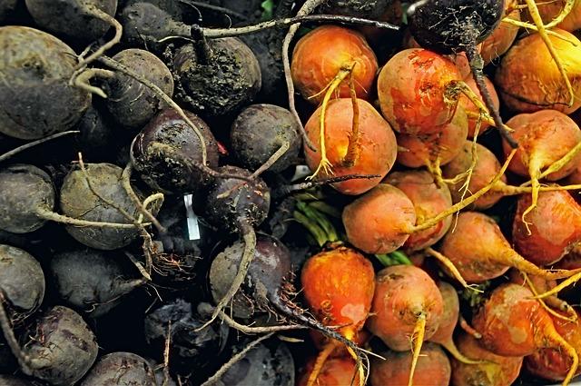 Врожай-2020: прогнозують 20 млн тонн картоплі та 9 млн - овочів - ціни, овочі, картопля, Держстат, врожай - beet 3784867 640