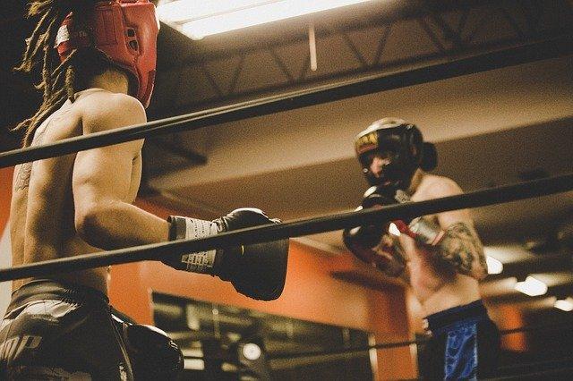 Бокс: з'явилася нова вагова категорія - спорт, Василь Ломаченко, бокс - people 2564757 640