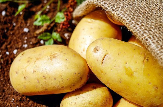 Врожай-2020: прогнозують 20 млн тонн картоплі та 9 млн - овочів - ціни, овочі, картопля, Держстат, врожай - potatoes 1585060 640