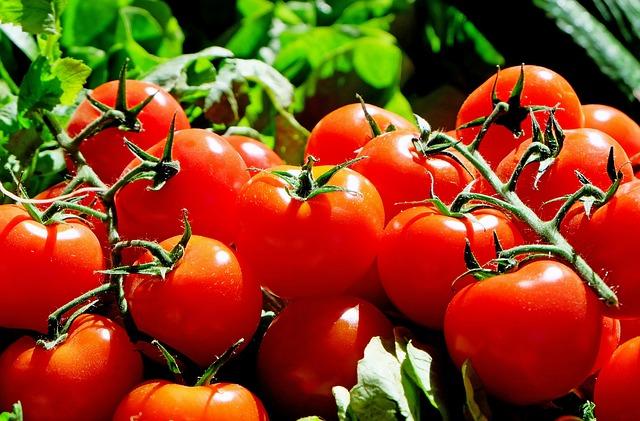 Урожай майже зібрали: продукти дорожчають - ціни, Урожай, продукція, Держстат - tomatoes 1280859 640
