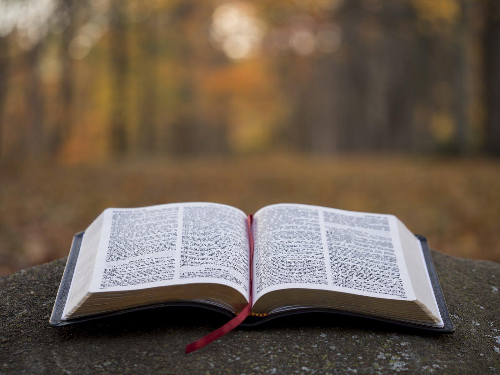 Політика і цінності: червоні лінії для християн Броварів - християни, молитва - yzobrazhenye viber 2020 10 16 09 32 07