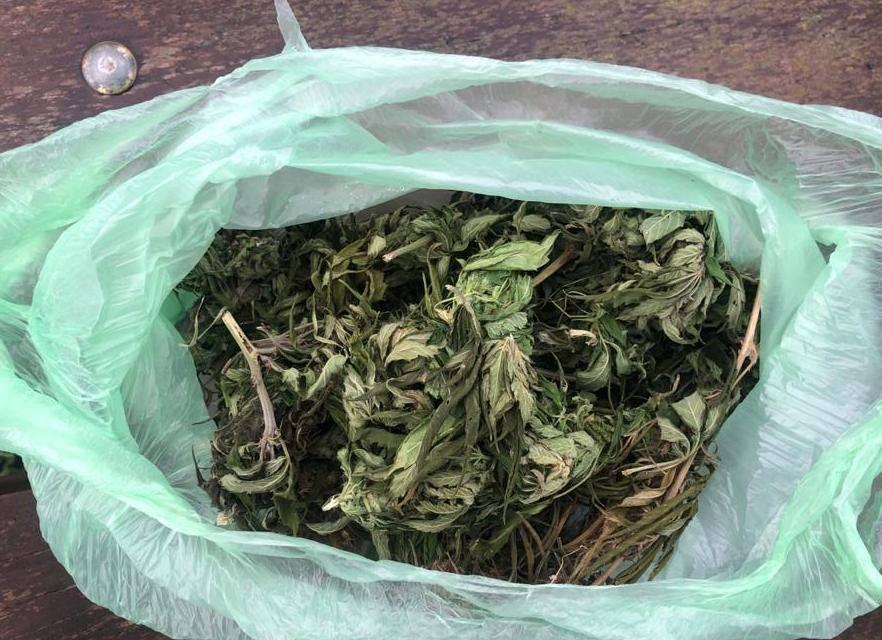 Поліція знайшла наркотики у кількох жителів Васильківщини - Наркотичні речовини, наркотики, конопля, амфетамін - 127280900 832493177513919 3486808268204117593 n