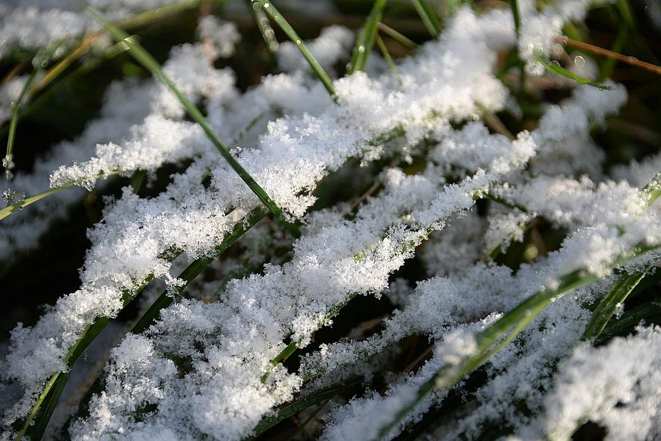 Перший сніг на Київщині випаде 17 листопада - сніг, погода, перший сніг - 16 sneg4