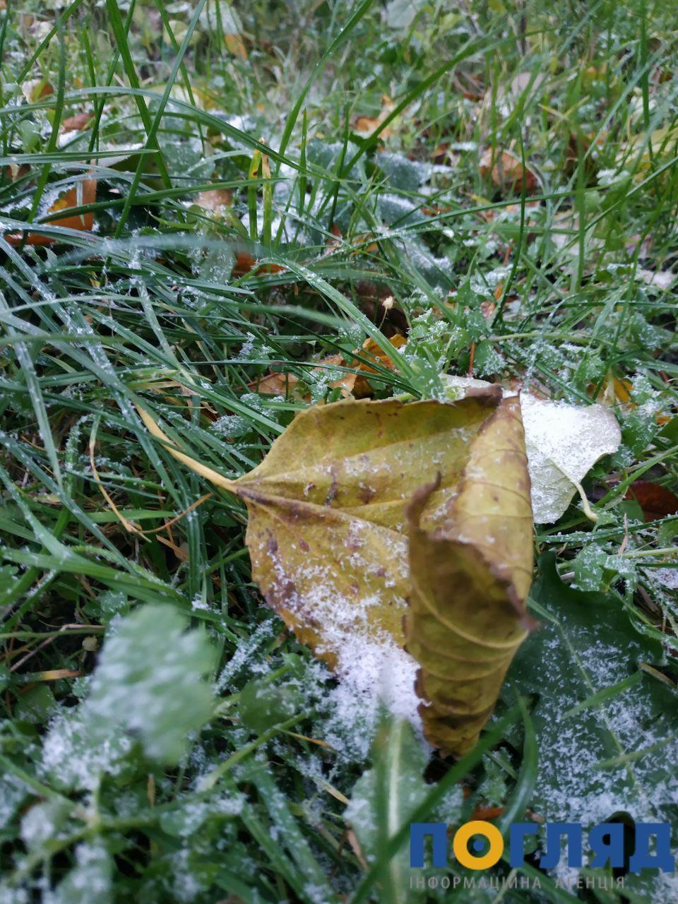 Засніжило: на Київщині випав перший сніг (ФОТО) - сніг, погода, перший сніг - 17 sneg Vyshgorod 2