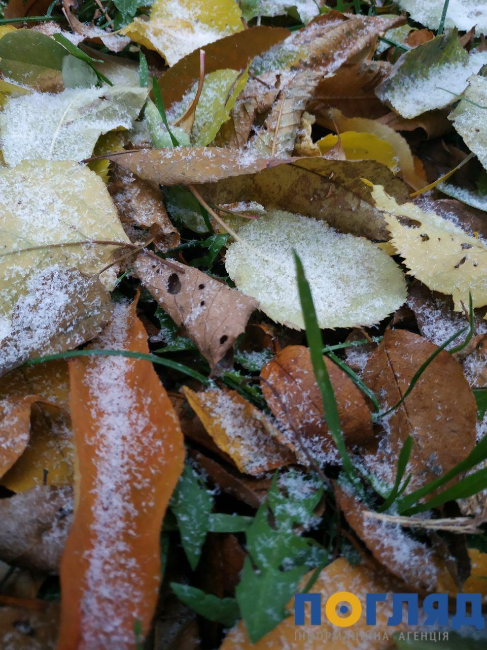 Засніжило: на Київщині випав перший сніг (ФОТО) - сніг, погода, перший сніг - 17 sneg Vyshgorod3