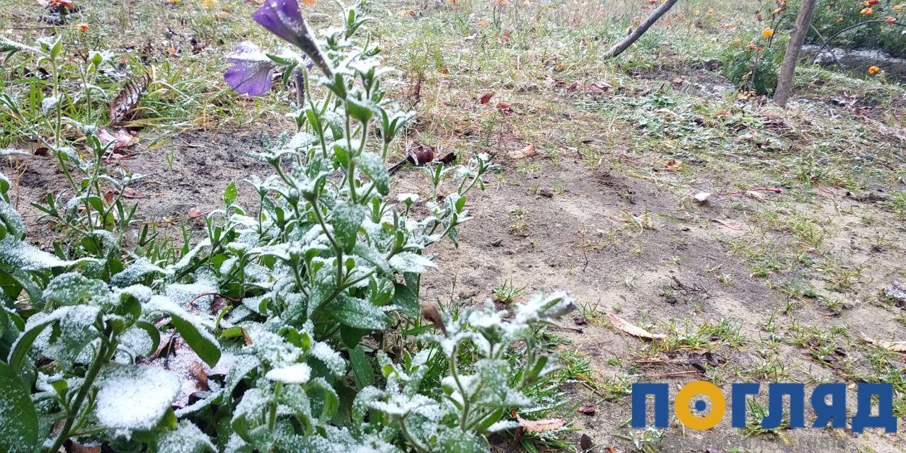 Засніжило: на Київщині випав перший сніг (ФОТО) - сніг, погода, перший сніг - 17 sneg bucha4