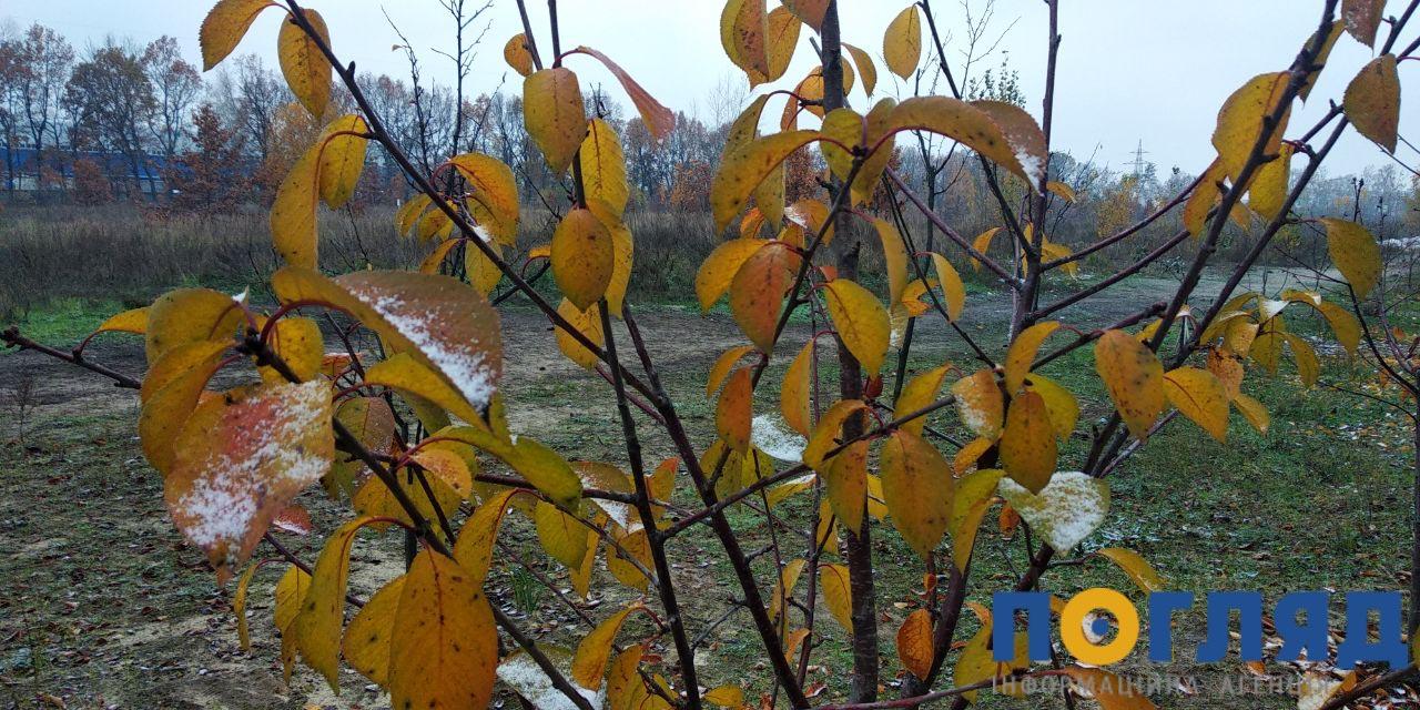 Засніжило: на Київщині випав перший сніг (ФОТО) - сніг, погода, перший сніг - 17 sneg bucha5