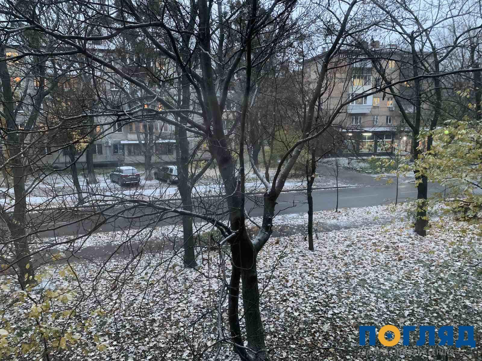 Засніжило: на Київщині випав перший сніг (ФОТО) - сніг, погода, перший сніг - 17 sneg kyev4