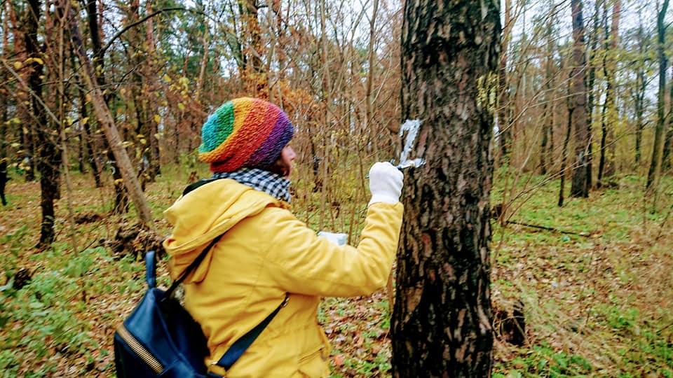 1088 дерев: в Ірпені парк Героїв АТО продовжують захищати від забудови - парк ато, ірпінь, забудова, Дерева - 3 2
