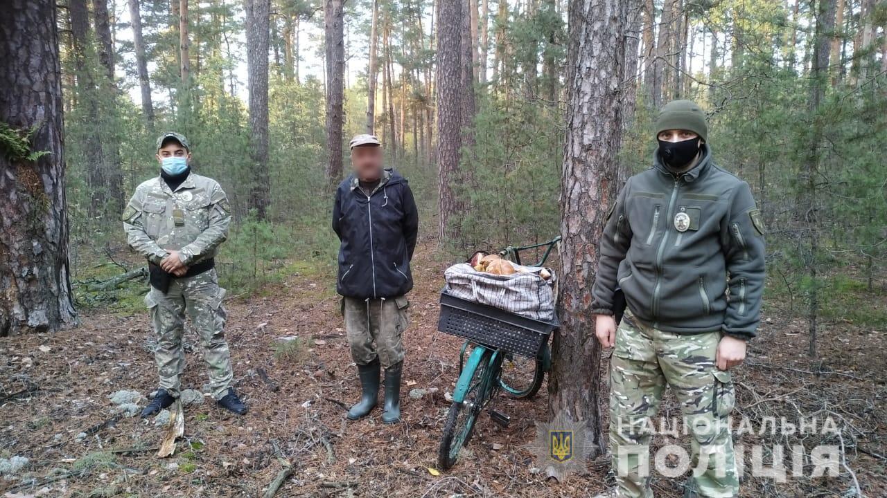 Зі смаком радіації: грибників-порушників покарають - грибний сезон - CHAESgrybnyky1