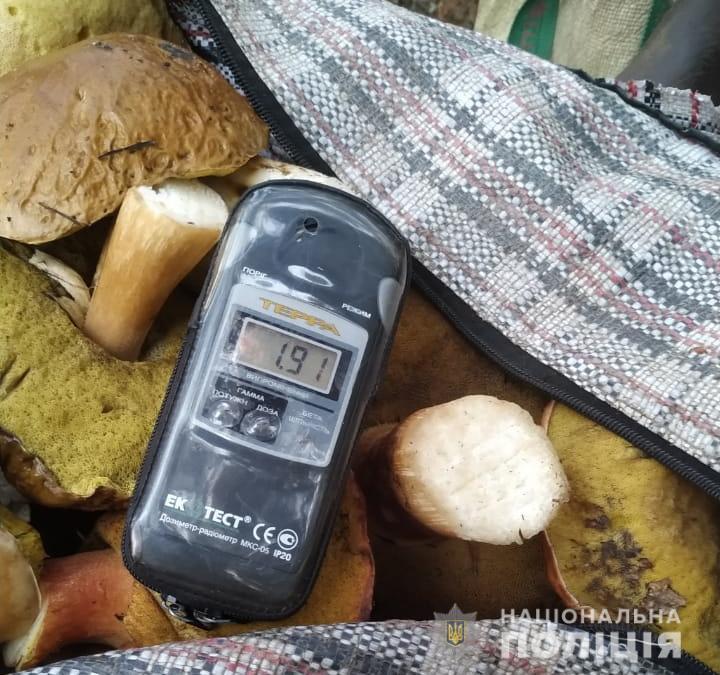 Зі смаком радіації: грибників-порушників покарають - грибний сезон - CHAESgrybnyky2