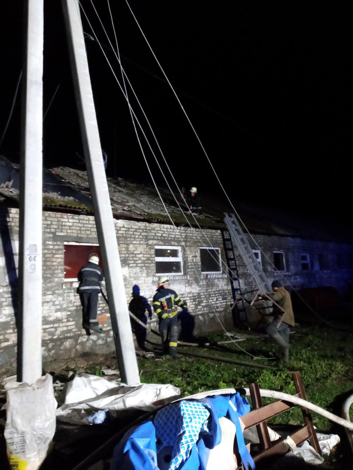 Рокитне: загасили пожежу будівлі тваринницької ферми - фермерське господарство, Тварини, Рокитне, вогонь - IMG 4369fc81fbab19c27212b8f0ea06d8fc V