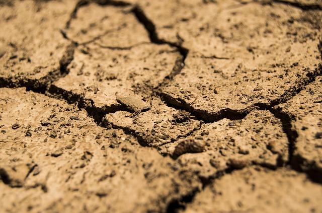 Фермери можуть отримати сертифікати про форс-мажорні обставини - посуха, зміна клімату, збитки, засідання - drought 780088 640