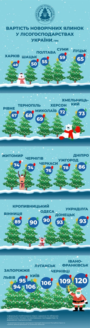Скільки цьогоріч коштуватимуть новорічні ялинки в Україні? - Ялинки, ялинка, новорічна ялинка, Новий рік, ліс - 01 yalynka