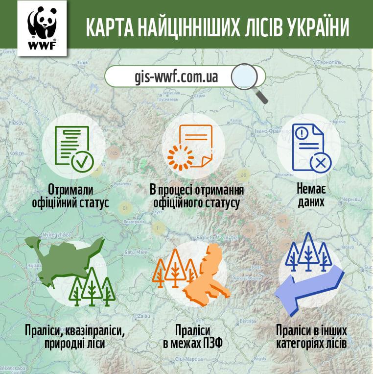 В Україні створили онлайн-мапу пралісів - лісовий фонд, ліси, ліс, дерево, Дерева - 03 mapa