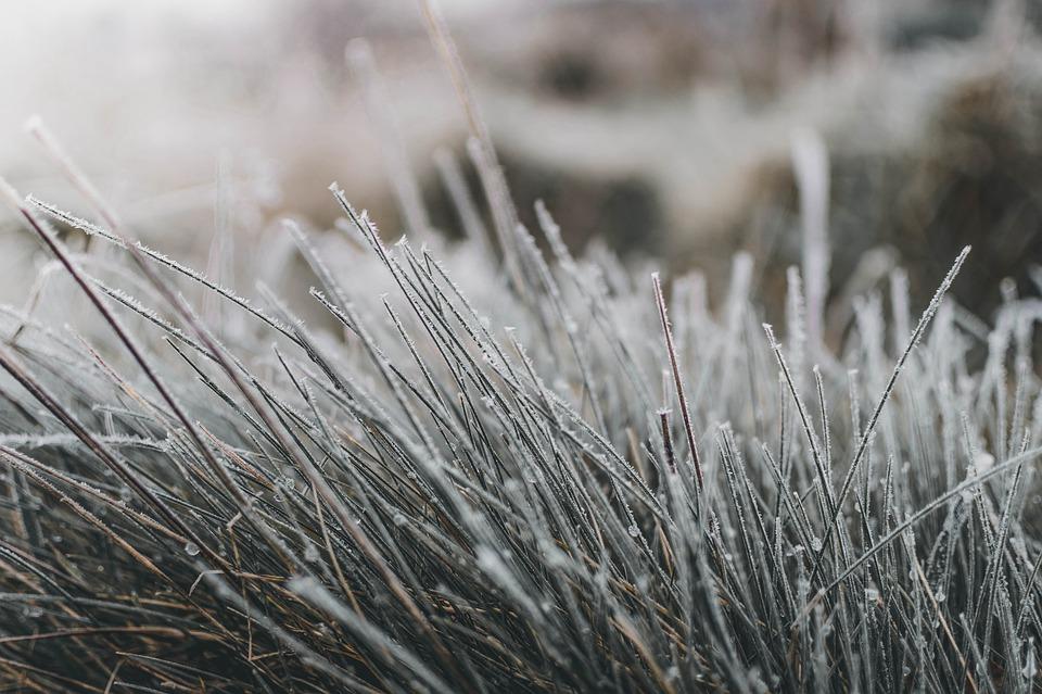 8 грудня на Київщині буде морозно - температура повітря, прогноз погоди, погода, морози, Мороз - 08 pogoda2