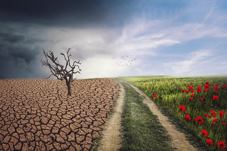 Україна 20-та у світовому рейтингу ефективності боротьби зі зміною клімату - зміни клімату, зміна клімату, глобальні зміни клімату, глобальне потепління, глобальна зміна клімату - 11 yndeks3