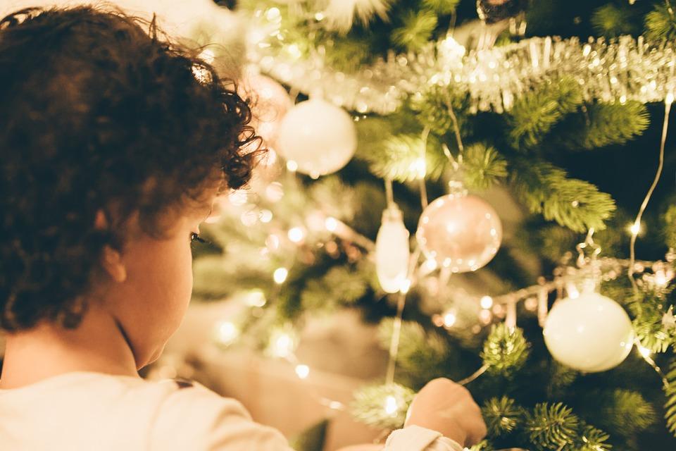 Як обрати новорічну ялинку? - Ялинки, ялинка, новорічне дерево, новорічна ялинка, Новий рік - 24 elka
