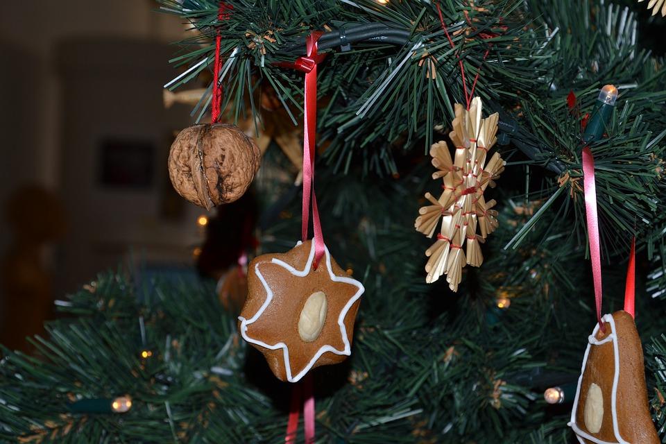 Як обрати новорічну ялинку? - Ялинки, ялинка, новорічне дерево, новорічна ялинка, Новий рік - 24 elka3