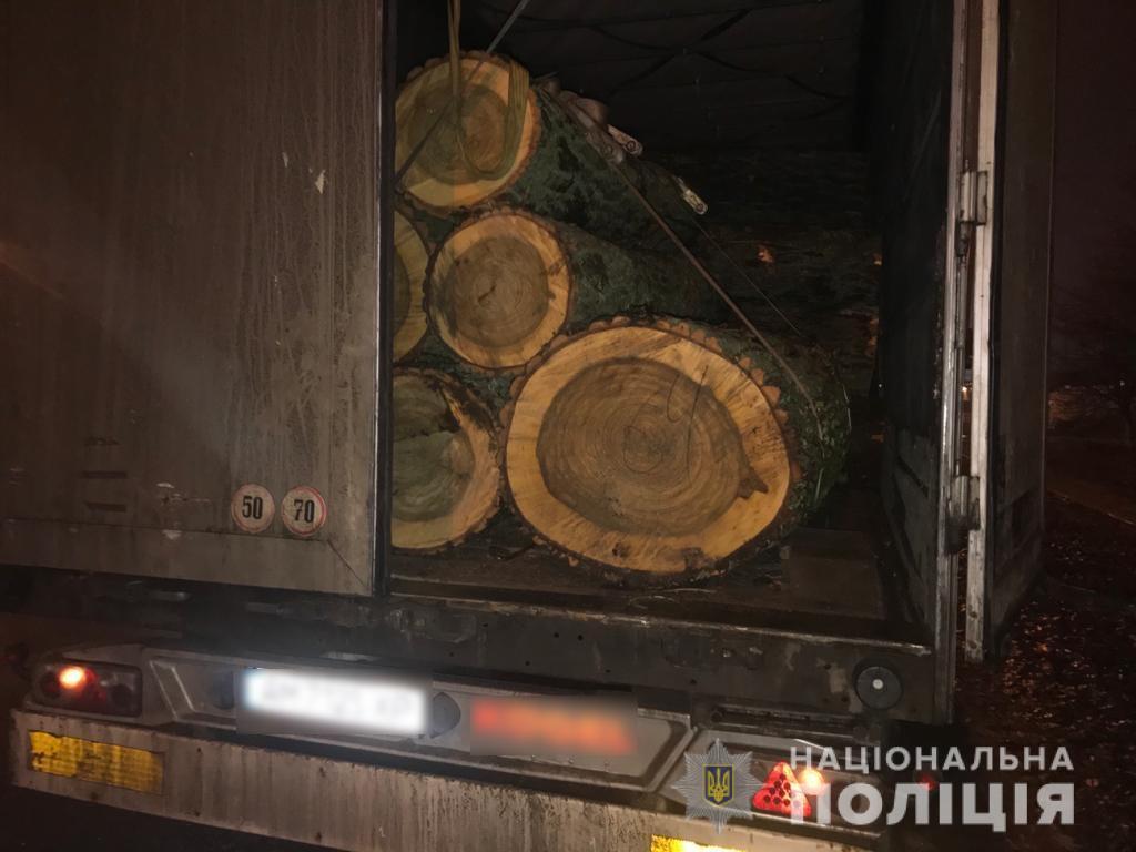 На Броварщині незаконно рубали ліс - поліція Київської області, ліс, кримінальне провадження, вирубка лісу - lesbrovari