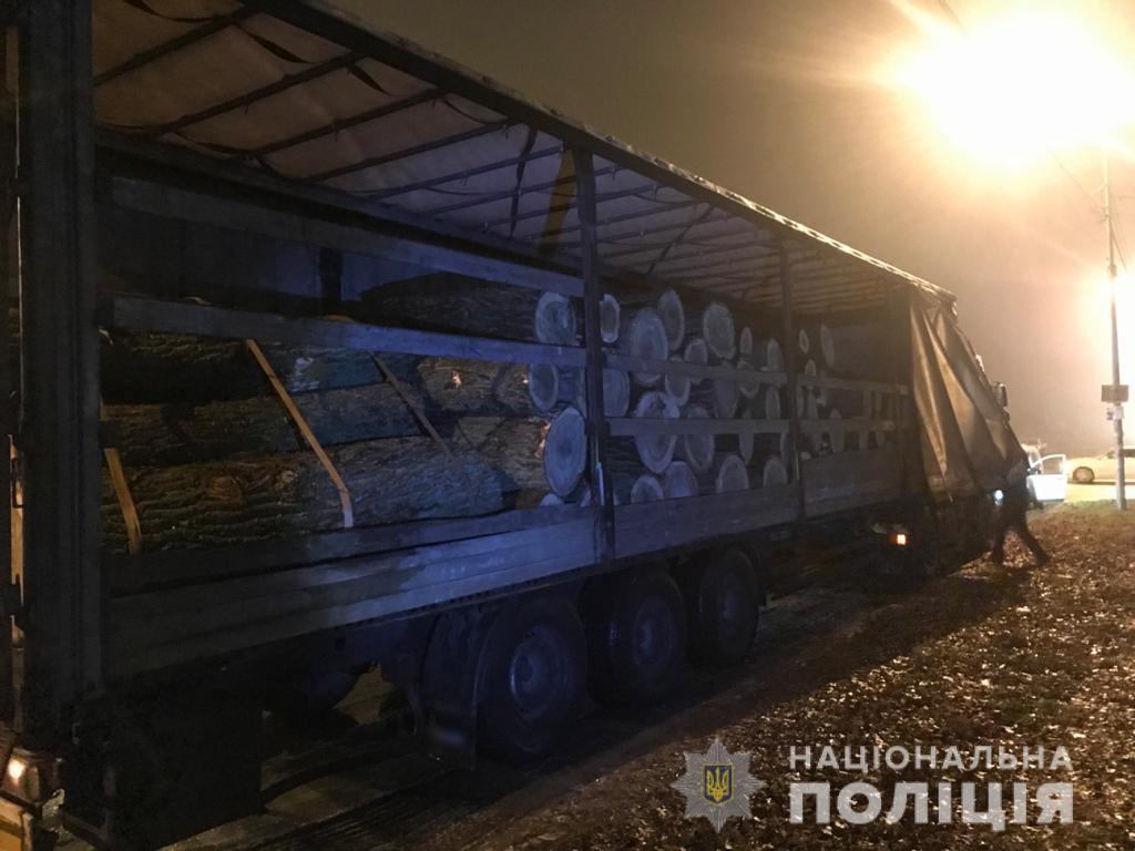 На Броварщині незаконно рубали ліс - поліція Київської області, ліс, кримінальне провадження, вирубка лісу - lesbrovari4