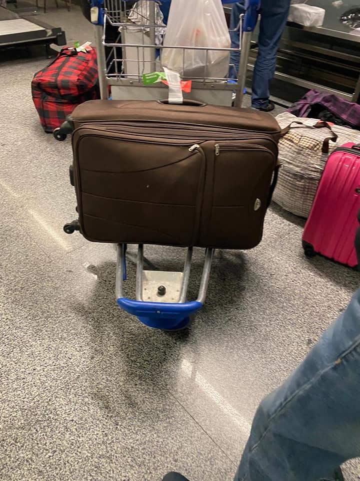 Українці хотіли незаконно ввезти в країну 260 кг брендових речей - Митниця, аеропорт «Бориспіль» - 141582450 1013268595826375 1783445047896521406 n