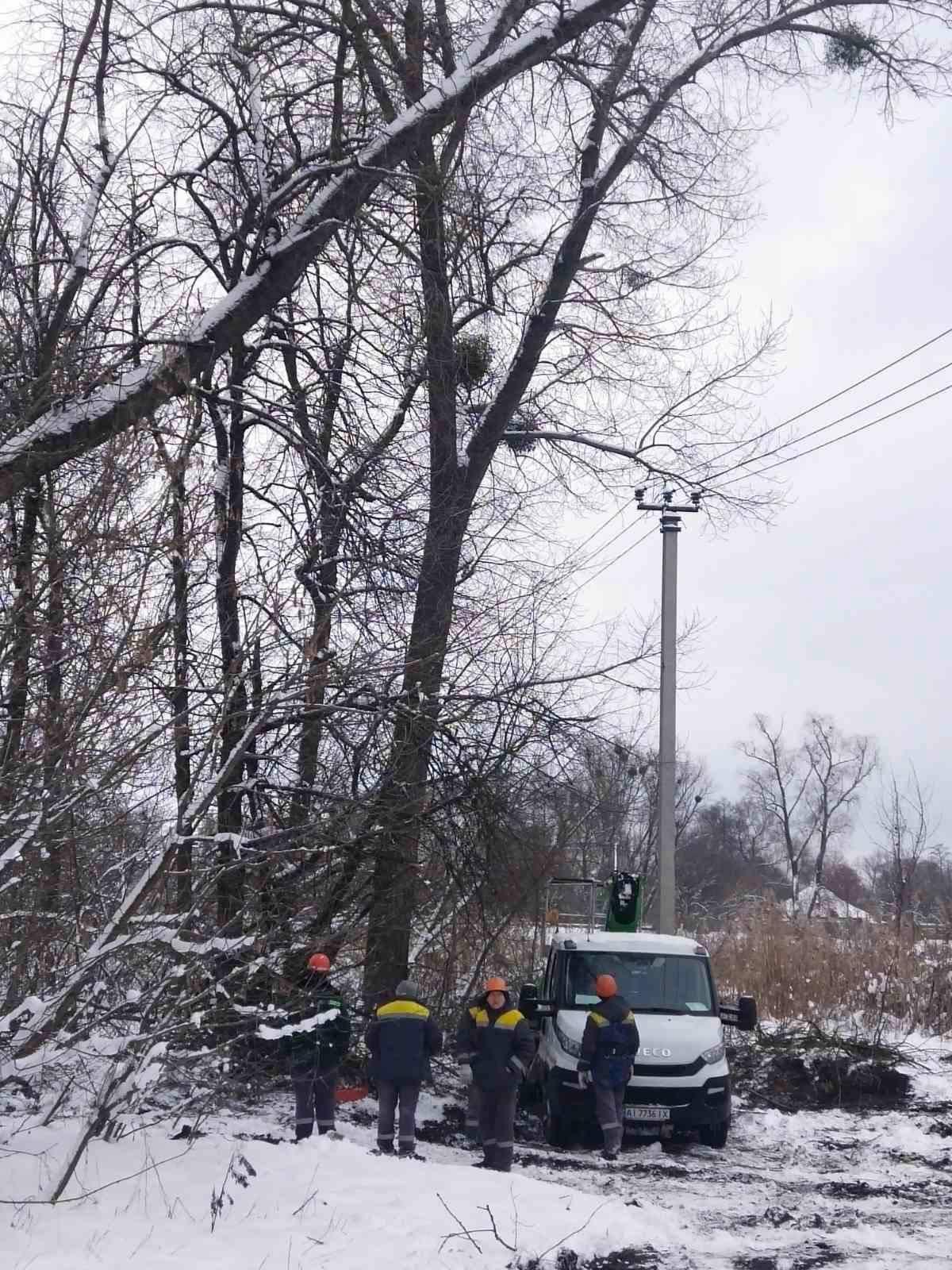 На Бориспільщині через бобрів люди сиділи без світла - світло, Електрика - 145300291 114100753967801 465977752586753429 o