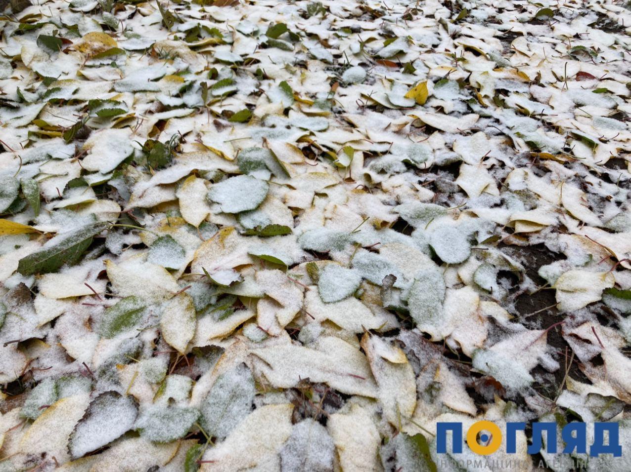 До –20°С та ожеледиця: на Україну насувається потужний арктичний циклон - прогноз погоди, похолодання, погода, ожеледиця, морози - 17 sneg Vasylkov2