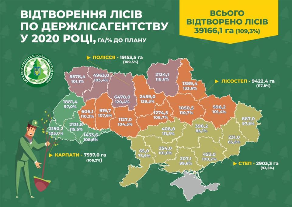За 2020 рік в лісах України висадили більше 160 млн сіянців - лісовий фонд, ліси, ліс, Держлісагентство, Дерева - 18 les2