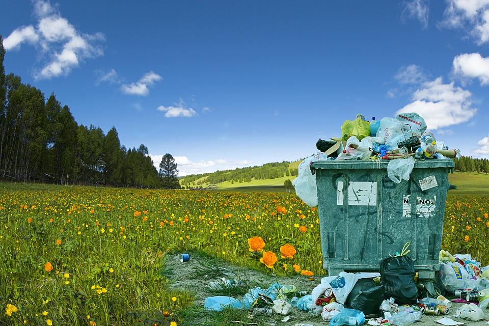 У 2020-му в Україні збільшилася кількість скарг про екологічні порушення - стихійні сміттєзвалища, сміттєзвалище, смітник, екологія, вирубка лісу - 18 musor