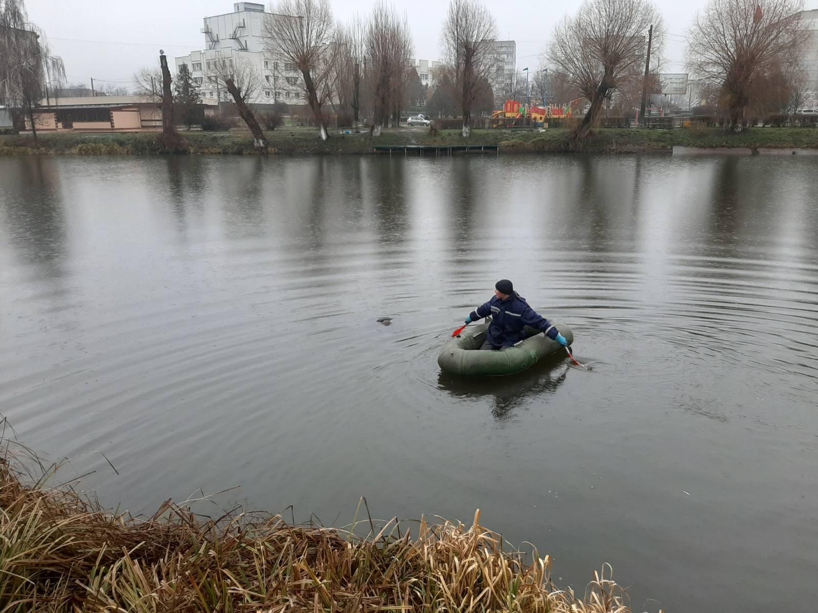 У Бородянці на Різдво з ставка дістали тіло жінки - потопельники, потопельник, загибель людини - 74D3FE59 85C2 41C4 AD8E 4E65AA2AD8ED