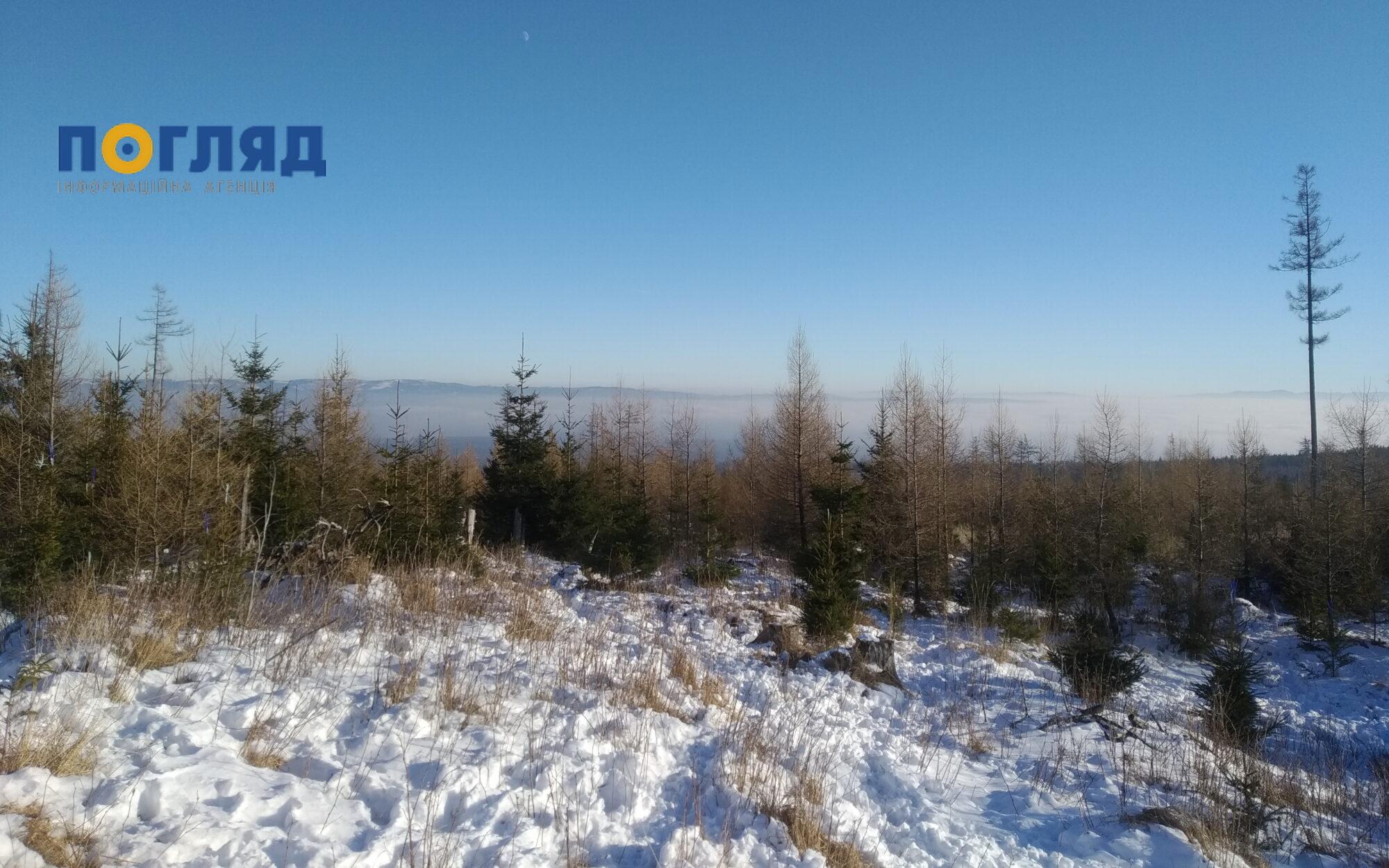 На Україну насуваються морози, але без істотних опадів - прогноз погоди, погода, морози, Зима - IMG 20200103 144630 2000x1250