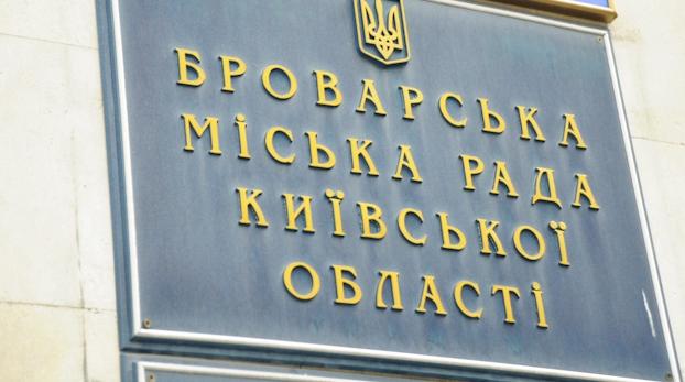 Місцеві вибори: Бориспіль і Бровари знову голосують - порушення виборчого права, місцеві вибори, голосування на виборах - brovary3